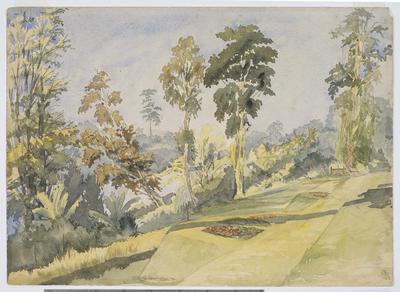 The garden, Winterbourne